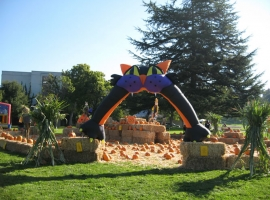 Mountain View Cemetery's 8th Annual Pumpkin Festival