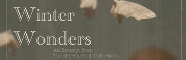 Winter Wonders: An Excerpt from The Marcus Kelli Collection